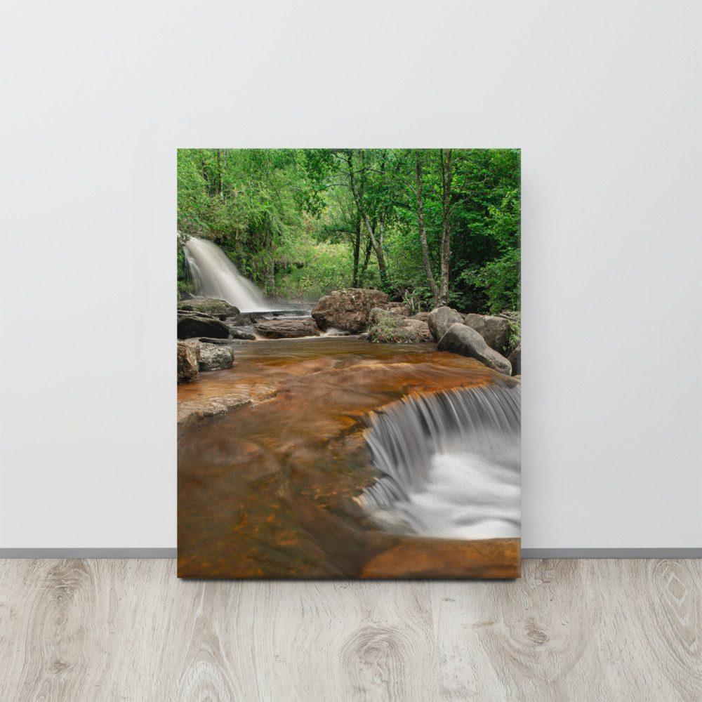 16 X 20 Custom Canvas Print